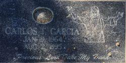 Carlos T Garcia