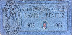 David L Benitez