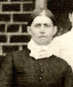 Mary Emily <I>Woolsey</I> Lovett