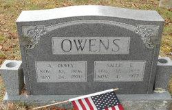 Sallie Erie <I>Dickerson</I> Owens