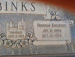 Amanda Erickson Binks