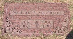 William Edgar Anderson
