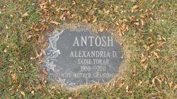Alexandria Sadie <I>Antosh</I> Tokar