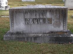Alexander E Marcus