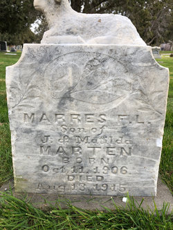 Morris F L Martin