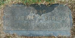 Theodore J. Baracz