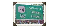 Wiregrass Irisheyes