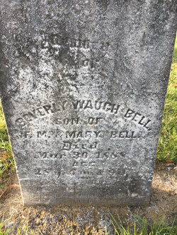 Beverly Waugh Bell