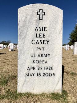 Asie Lee Casey