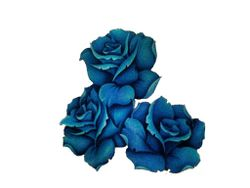 Blue Rose Of Cairo