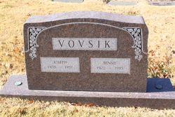 Joseph Vovsik