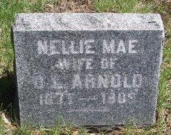 Nellie Mae <I>Hitchon</I> Arnold
