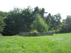 Chilton - Dyer Family Cemetery