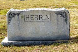 Henrietta Josephine <I>Scott</I> Herrin