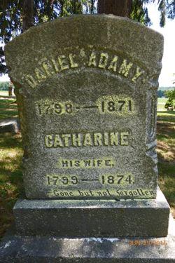 Catherine <I>Brink</I> Adamy