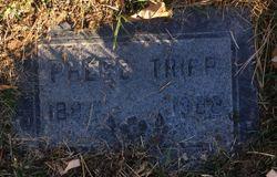 Phebe Tripp