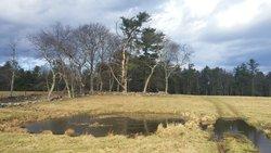 Norris Burial Ground