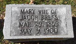 Mary <I>Schmitt</I> Bress