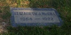 Elizabeth J McGill