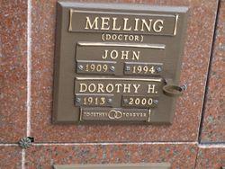 Dr John Melling
