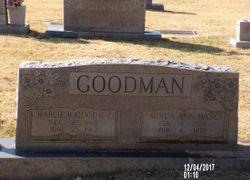 Aminda Ann <I>Hays</I> Goodman