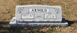 Amy <I>Eyssen</I> Arnold