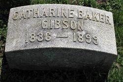 Catharine <I>Baker</I> Gibson