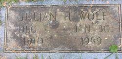 Julian H Wolf