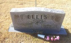 Sylvia Ann <I>Clark</I> Ellis