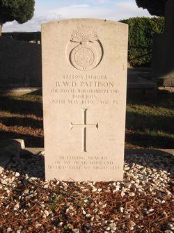 Richard William Davidson Pattison