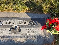 John Robin Taylor