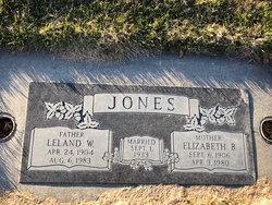 Leland Jones
