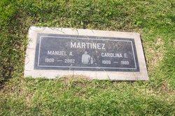 Manuel A Martinez
