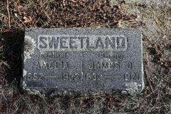 Amelia Sweetland