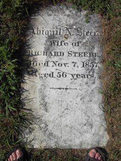 Abigail N. <I>Haskell</I> Steere