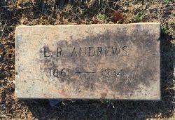 Elijah Robert Andrews