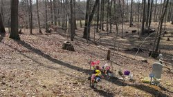 White-Davis Cemetery