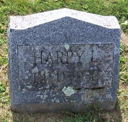 Harry L Hedges
