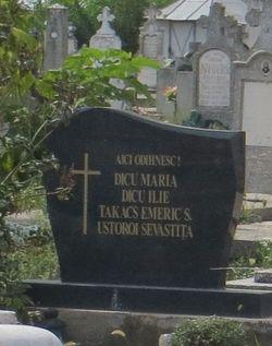 Ilie Dicu - Find A Grave Memorial