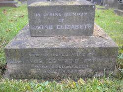 Sarah Elizabeth <I>Nunn</I> Estwick