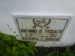 Felicinda C Tribaco