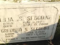 Lilia S Segodine