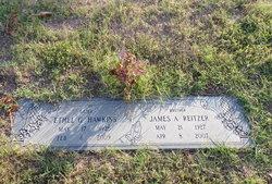 James Albert Reitzer