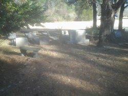George Bunn Cemetery