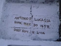 Antonio P Lucasia