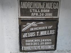 Jesus T Nullas