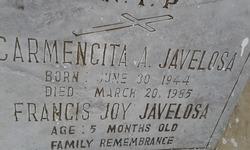 Francis Joy Javelosa