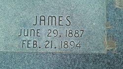 James A McLachlan