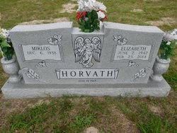Miklos Horvath