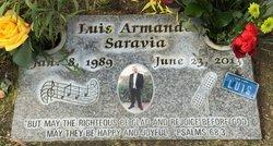 Luis Arnande Saravia